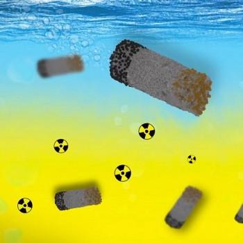 موفقیت پژوهشگر ایرانی در پاکسازی زبالههای رادیواکتیو با میکرورباتها
