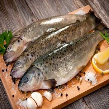 پایش فساد ماهی با نانوحسگر ایرانی