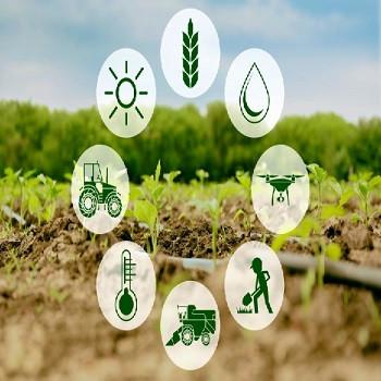 فناوری نانو در کشاورزی پایدار؛ تحولات اخیر، چالشها و دیدگاهها